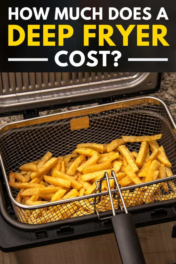 Potato fries on a fryer basket, How Much Does A Deep Fryer Cost?