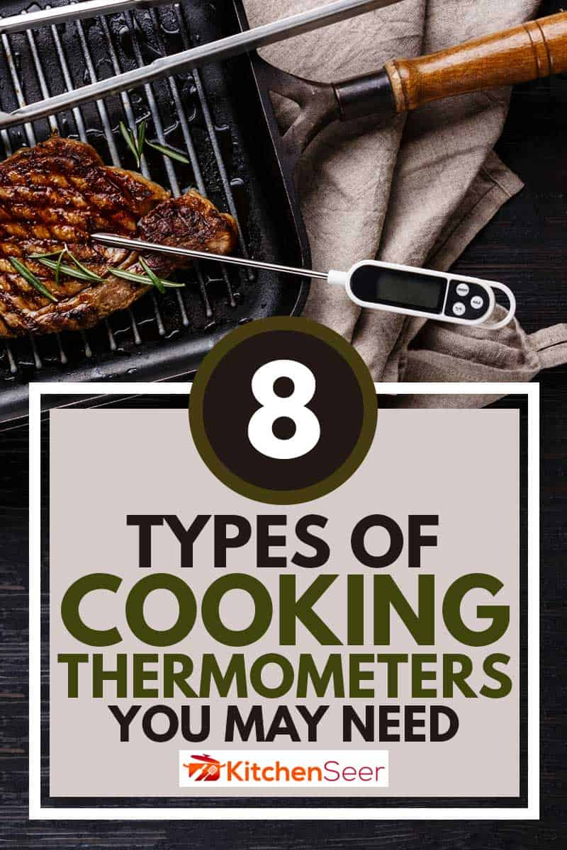 Grilled Steak Striploin on pan and meat thermometer on black burned wooden background, 8 Types Of Cooking Thermometers You May Need