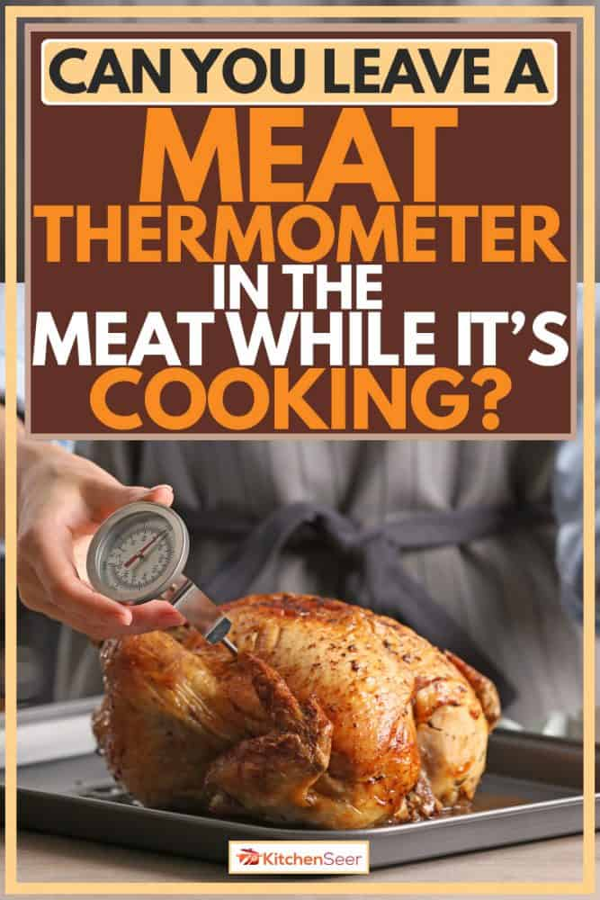 Man holding meat thermometer and sticking it into the roasted chicken, Can You Leave A Meat Thermometer In The Meat While It's Cooking?