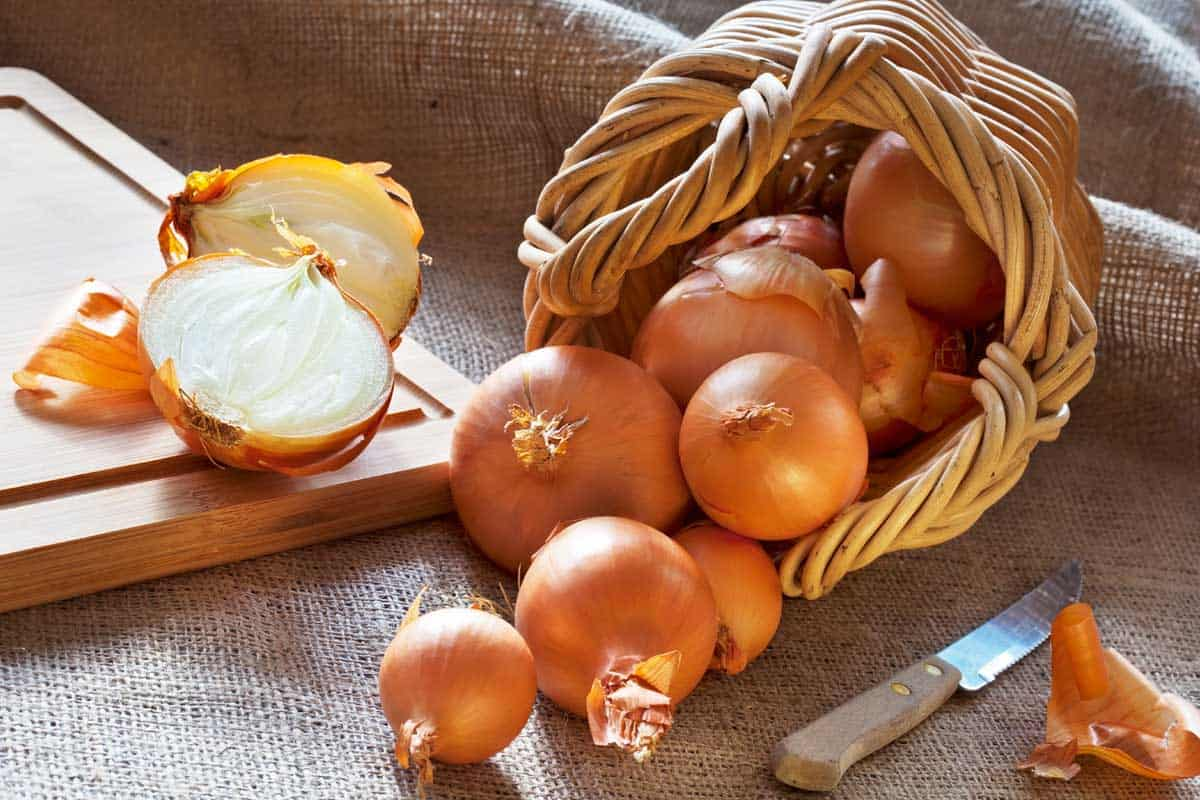 Loose onions scattered from wicker basket and one onion cut in halves on suckcloth, What's The Best Way To Store Onions? [Best Storage Options Discussed]
