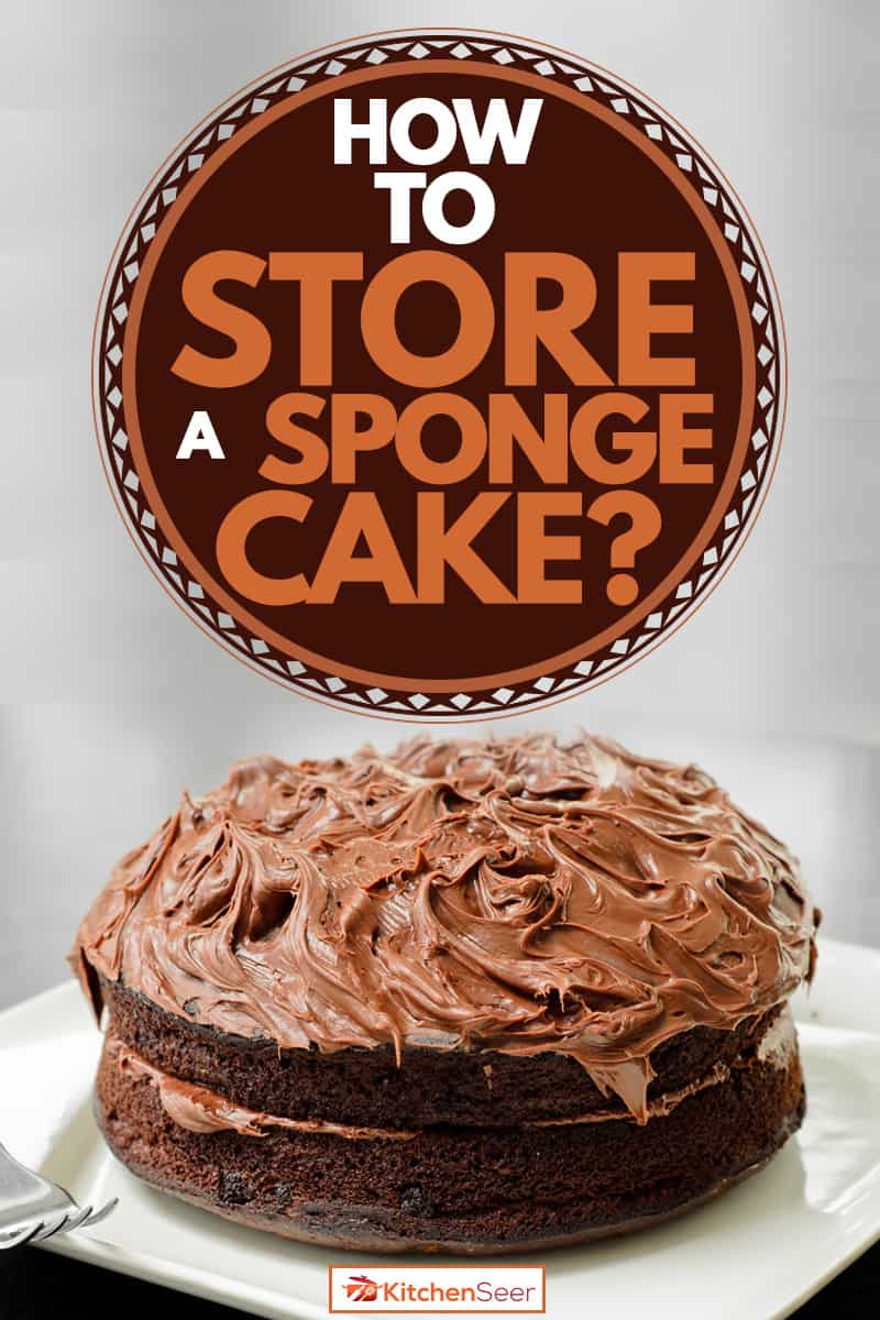 A chocolate sponge cake on a white plate with a fork and a napkin on the side, How To Store A Sponge Cake