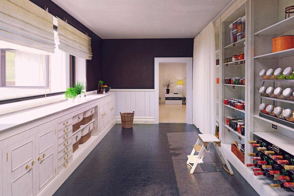Modern pantry interior design