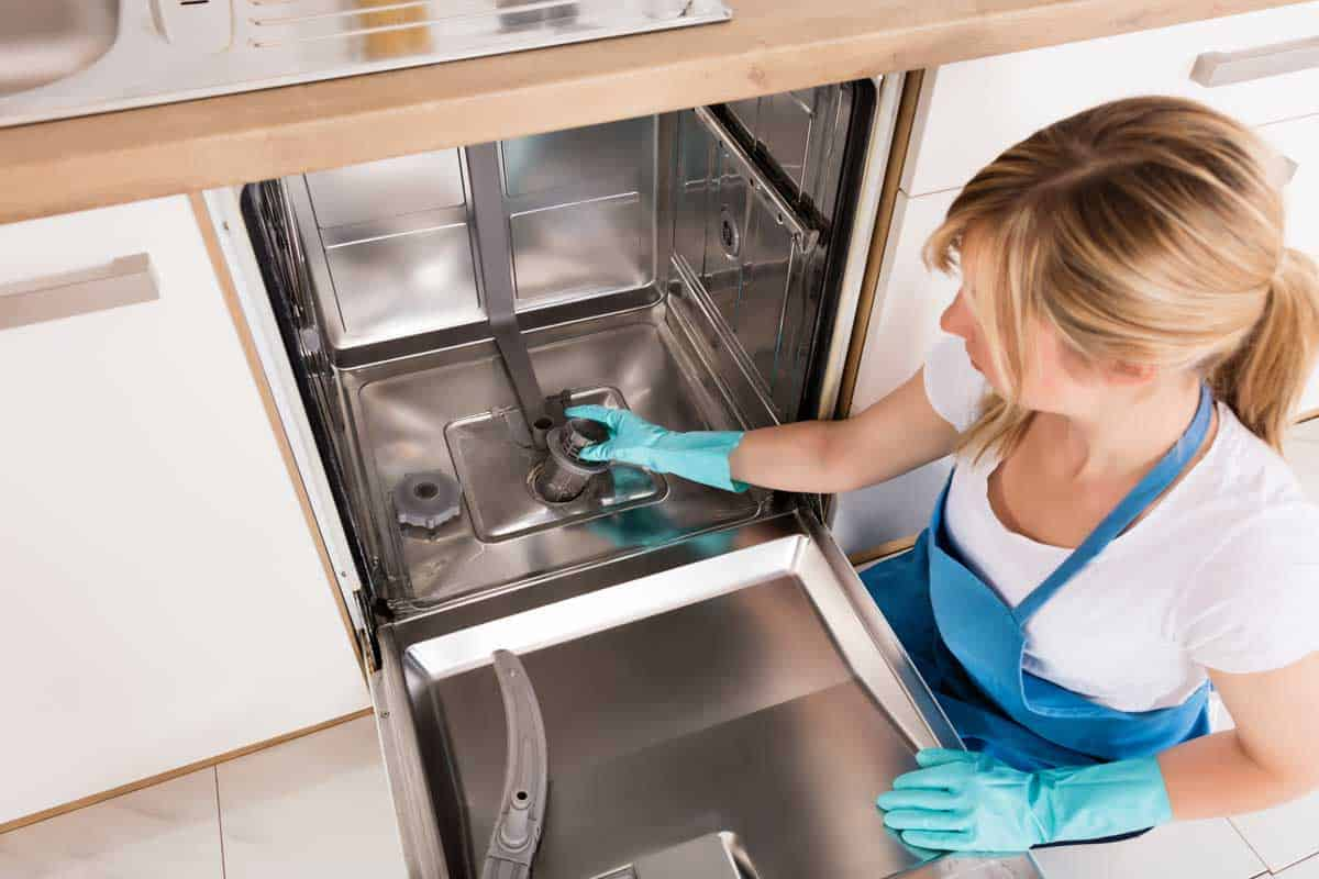 Young woman cleaning dishwasher in kitchen, How To Clean A Kenmore Dishwasher? [Inc. The Filter]