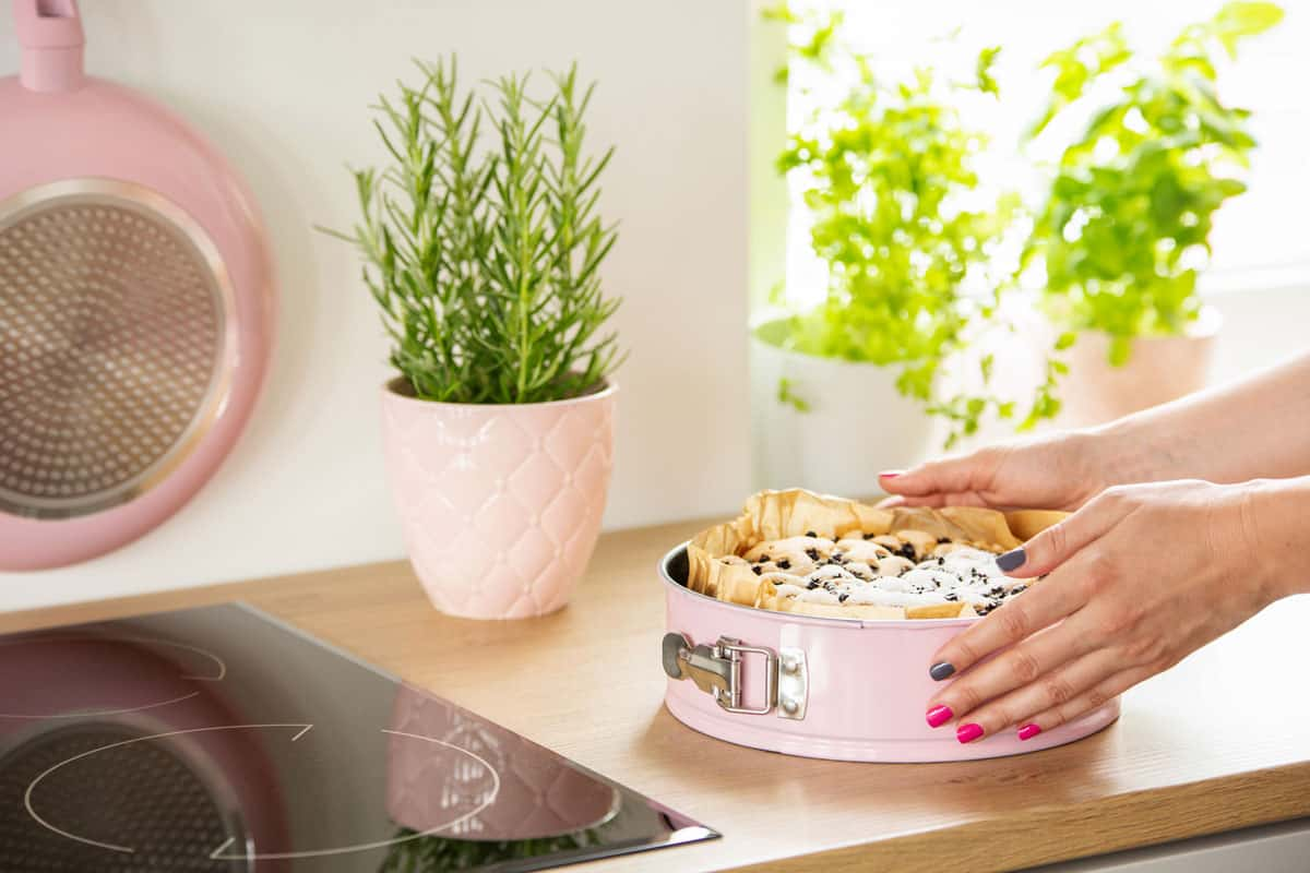 A woman opening a springform pan with delicious cake on it, Springform Pan Won't Open? Here's What To Do