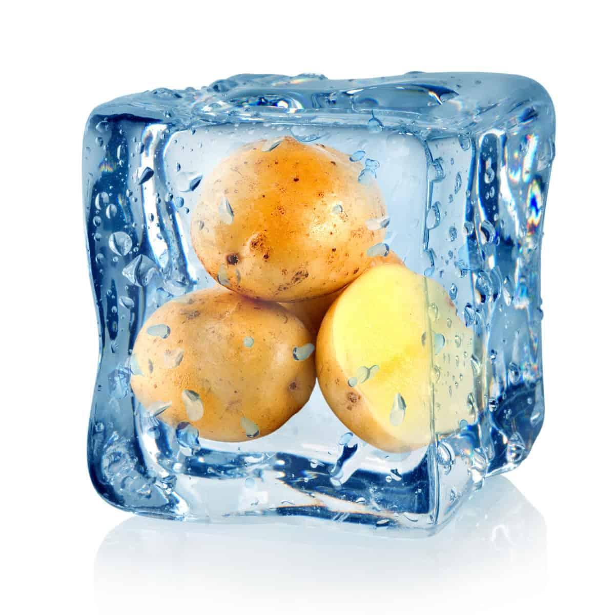 Potatoes inside an ice cube