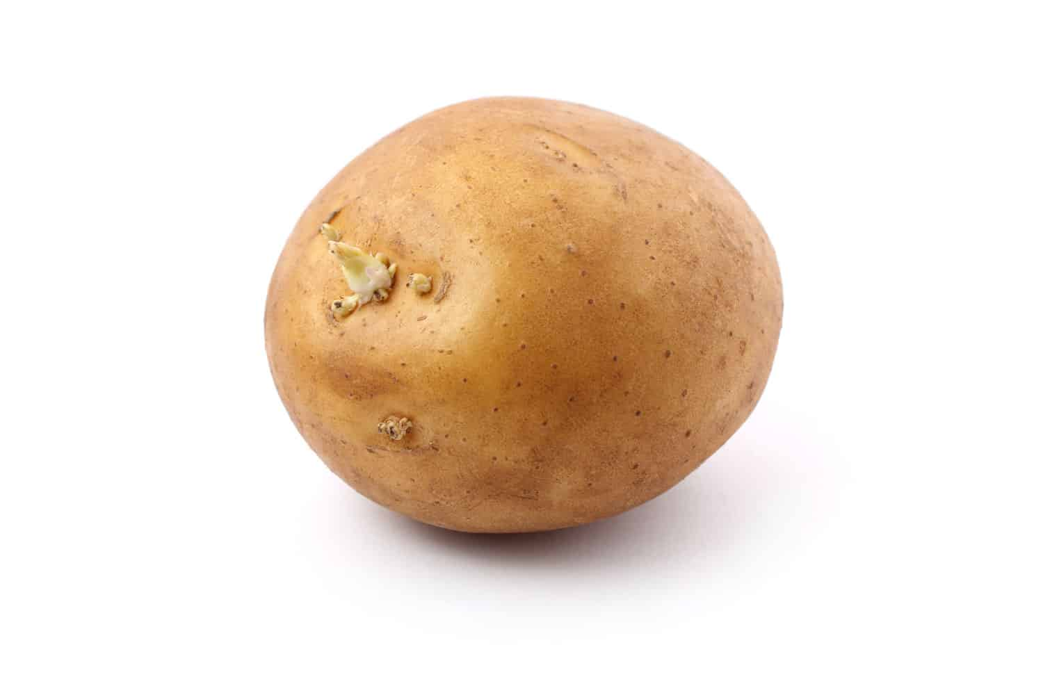 An up close photo of a potato germinating on a white background