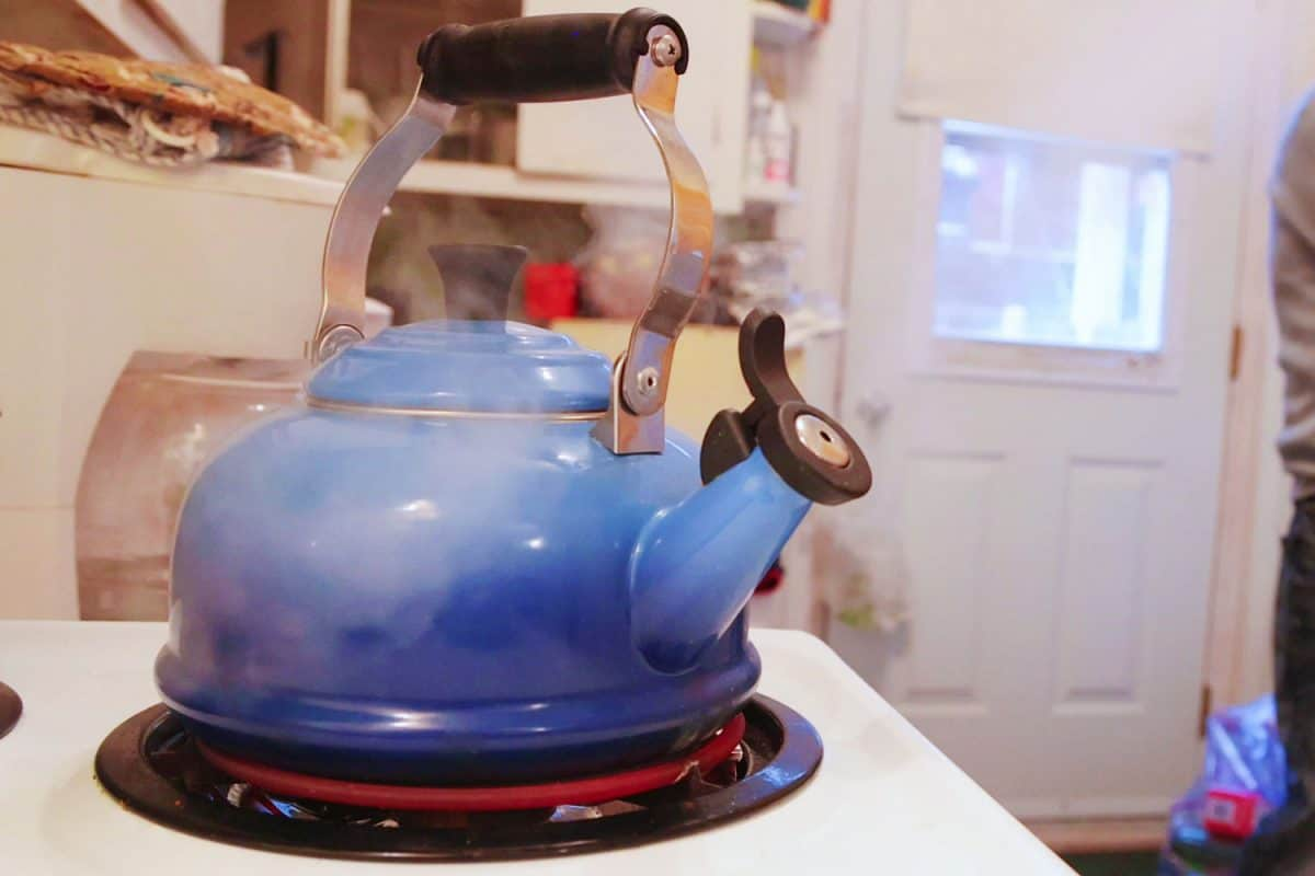 A blue colored kettle on the stove, Do Le Creuset Kettles Rust?