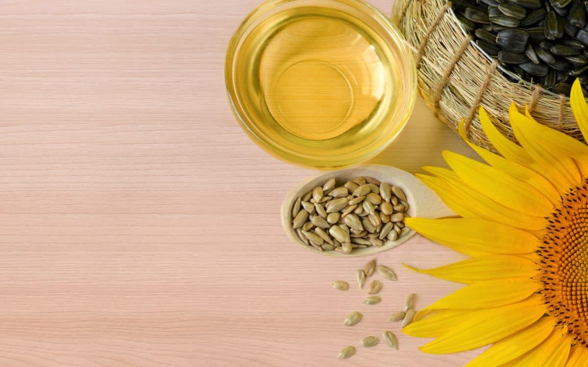 Sunflower oil, seeds and flowers of sunflower close up with space for text on wooden background.