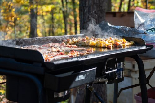 Read more about the article What Oil Is Best For Seasoning A Griddle?
