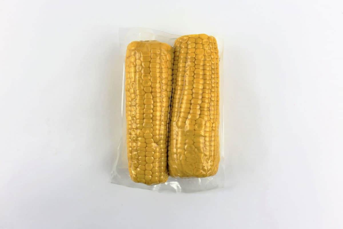 Vacuum sealed fresh corncobs for sous vide cooking cutout on white, Can You Vacuum Seal Corn On The Cob? [And How To]