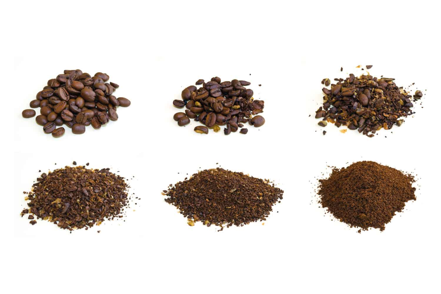 photo of arabica coffee beans at various stages of grinding