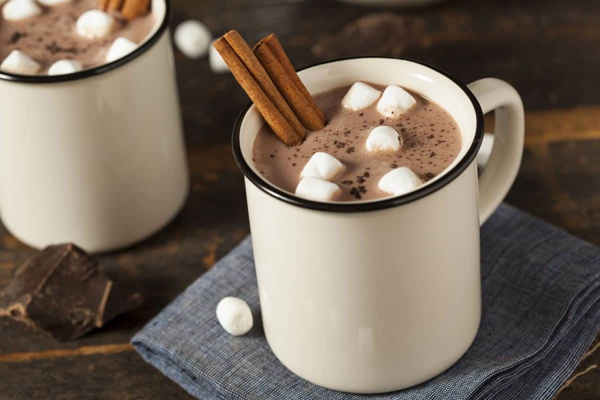 A cup of hot chocolate with marshmallows and cinnamon