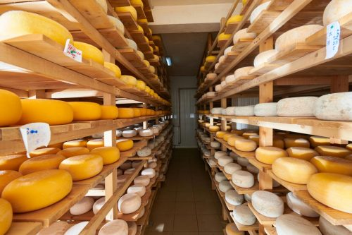 Read more about the article Does Cheese Always Age Well Or Does It Go Bad Eventually? [According To Type Of Cheese]