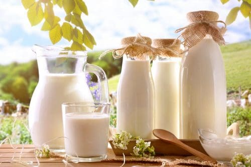 Read more about the article What Is The Best Container To Store Milk?