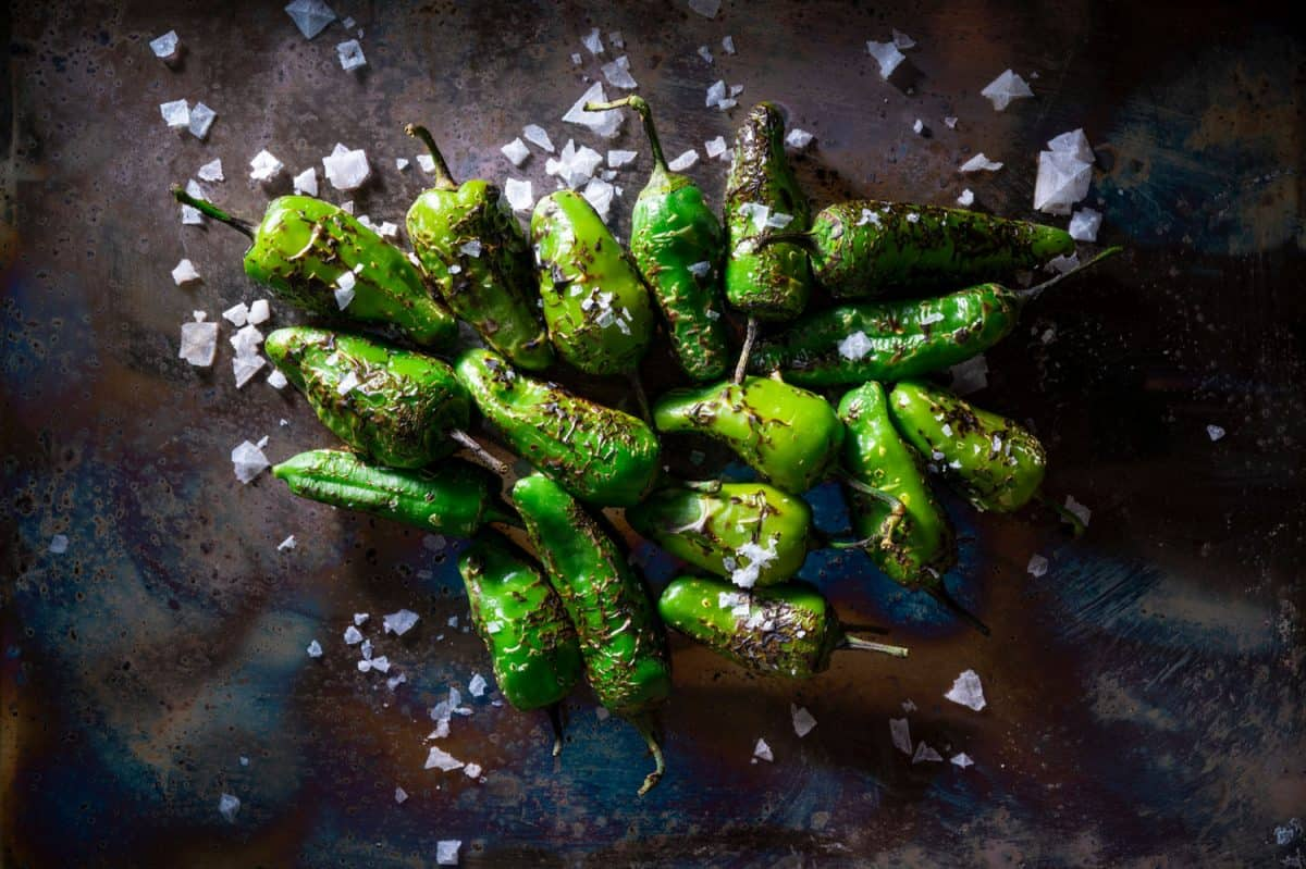 Pimientos del Padron tapas salted are Spain chili peppers, Does Frying Chili Make It Hotter Or Less Spicy?