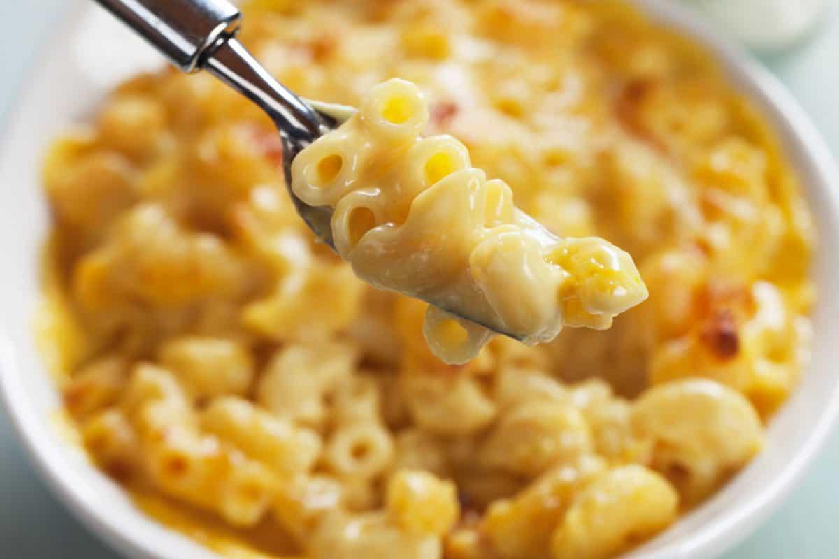 Up close photo of mac and cheese