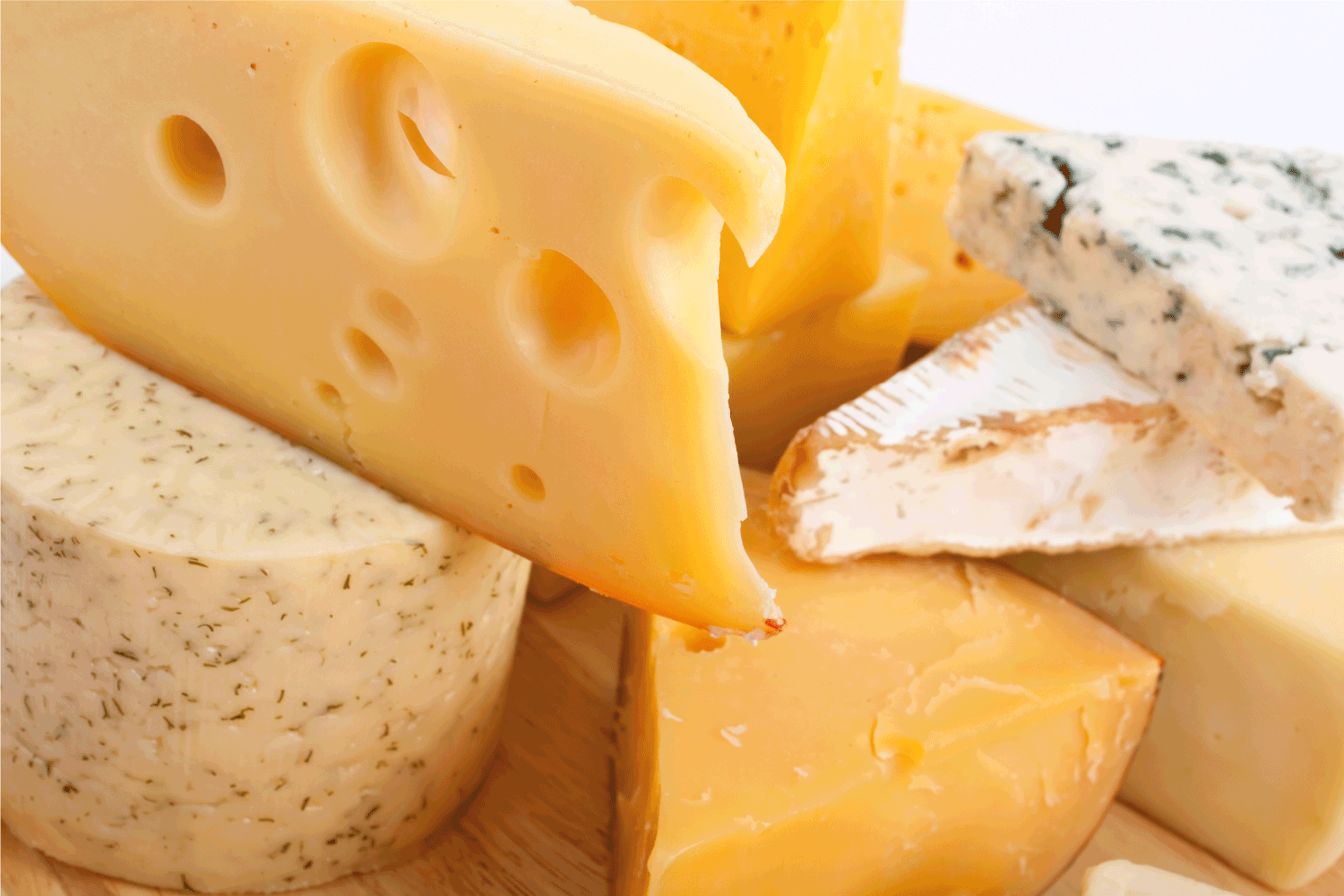 Various types of cheese. close up photo