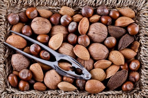 Read more about the article What Nuts Do You Crack With A Nutcracker?