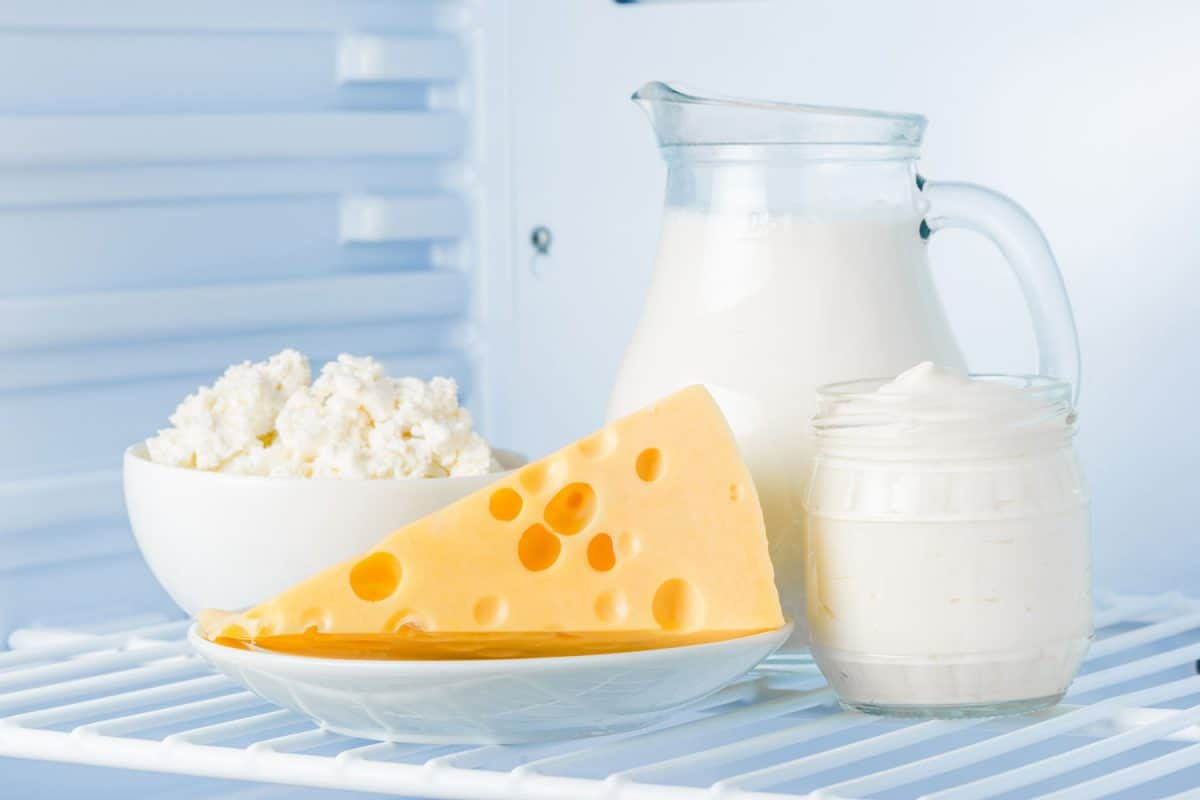 tasty healthy dairy products in the refrigerator: sour cream in the bank, cottage cheese in bowl, cheese and milk in a jar, How Long Does Cheese Last In The Fridge?