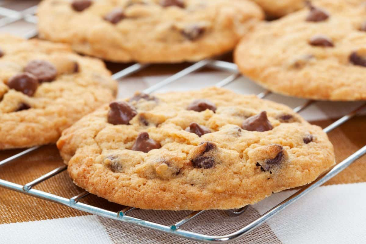 Delicious and freshly baked chocolate chip cookies