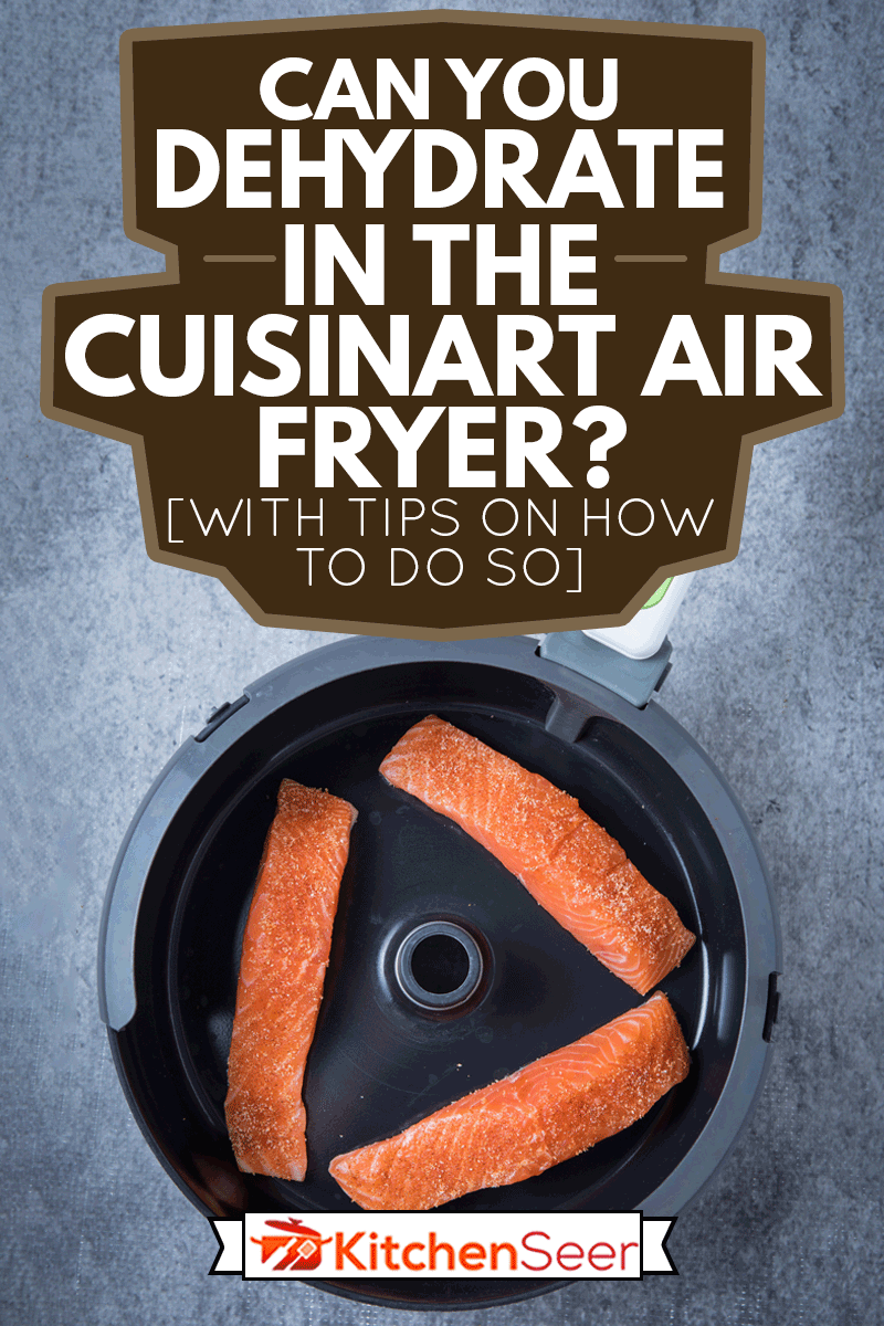 Three pieces of raw salmon in the air fryer at the center with a grey background, Can You Dehydrate In The Cuisinart Air Fryer? [With Tips On How To Do So]
