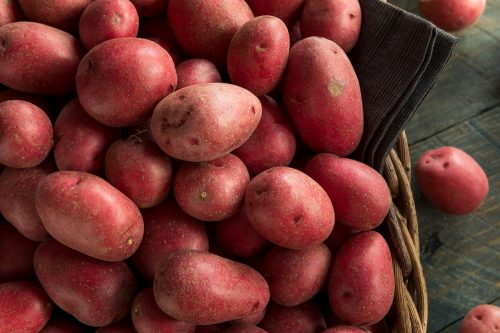 Read more about the article Can You Make French Fries With Red Potatoes?