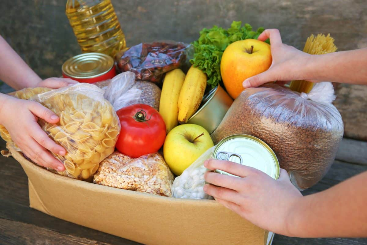Two people stacking food in the cardboard box, How To Monitor Storage Temperatures In Your Kitchen